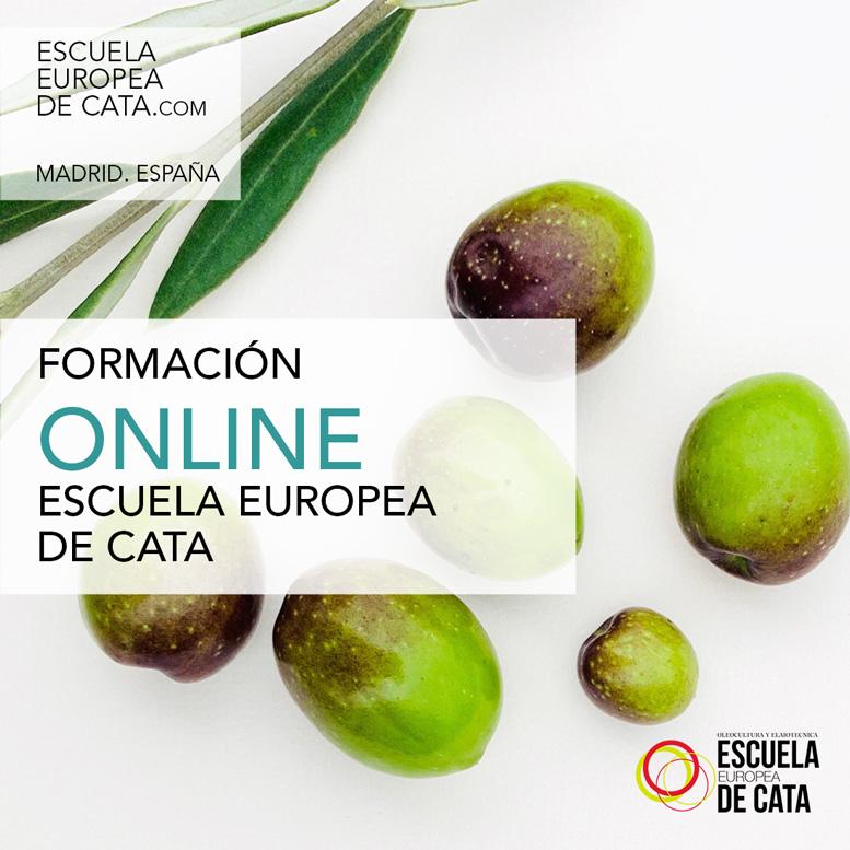 FORMACION ONLINE ACEITES DE OLIVA