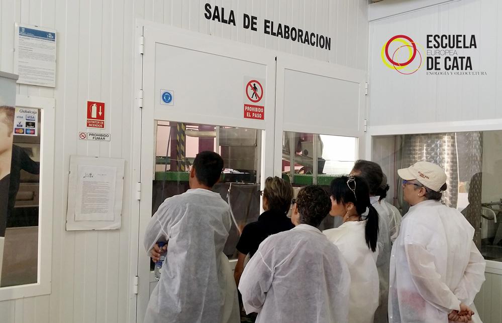 Curso de Maestro/a de Almazara. Elaiólogo/a. Gestión en la producción de aceite de oliva virgen extra de calidad