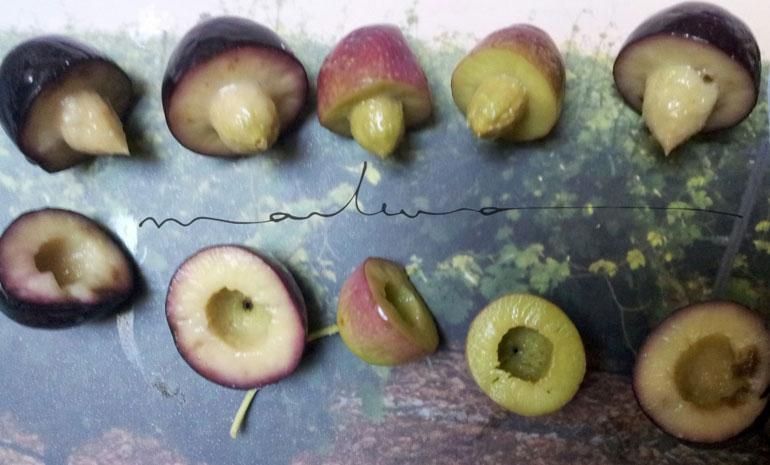 ¿De dónde vienen los frutados de los AOVEs?